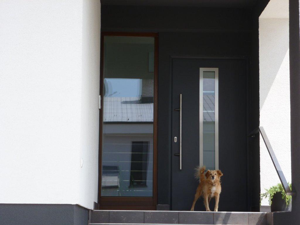 Domové dvere